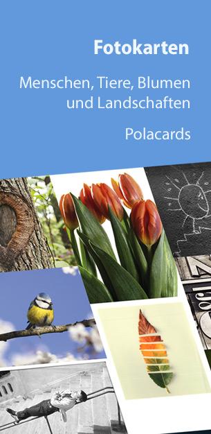 Postkarten und Fotokarten - Menschen, Tiere, Blumen, Landschaften und Polacards